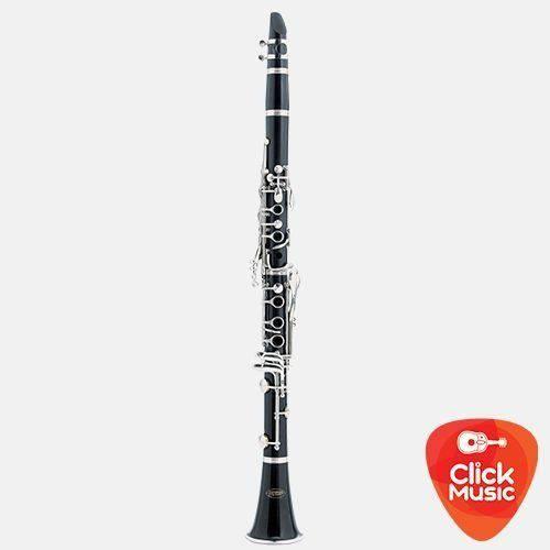 Clarineta Hoyden Hcl-25b Abs Brilh 17 Chaves