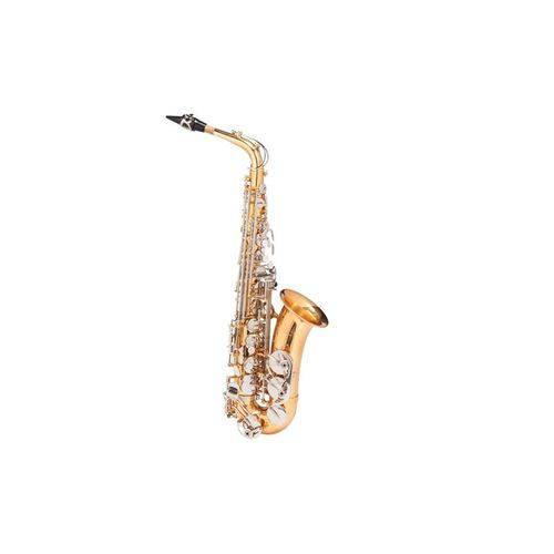 Sax Alto Michael Wasm49
