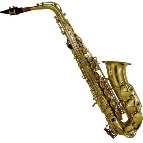 Saxofone Alto Laqueado com Case Luxo Correia Bsa1-L Benson