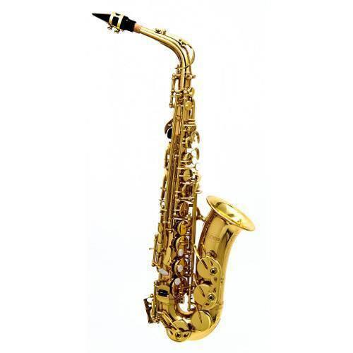 Saxofone Alto Laqueado Has-25l Hoyden
