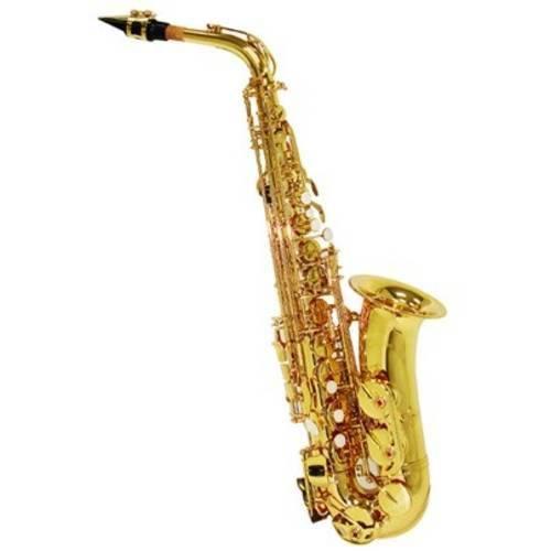 Saxofone Alto Shelter Sft6430l em Mib (Eb) com Case