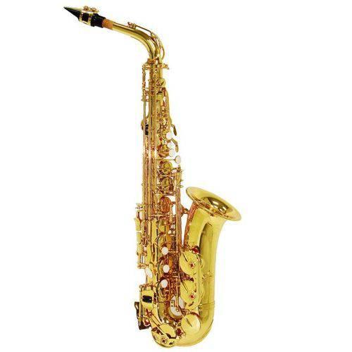 Saxofone Alto Shelter Sgft6430l Laqueado Dourado em Eb C/ Estojo