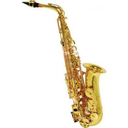 Saxofone Alto Shelter Tjs 6430L Dourado com Case